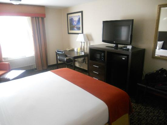 Holiday Inn Express Oakdale: View of room