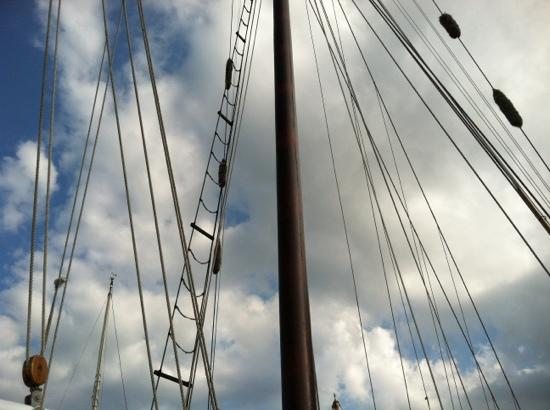 Argia Cruises: Great view of The Argia sailboat looking up.