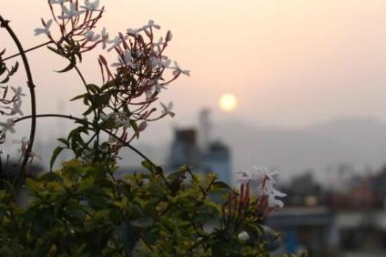 Asmita Bed & Breakfast: Sunset in our terrace