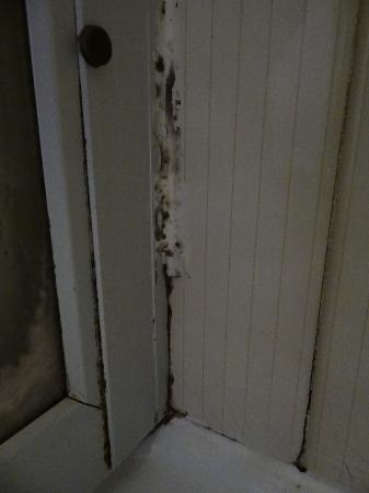 Hotel du Moulin Vert : NASTY, FILTHY shower door