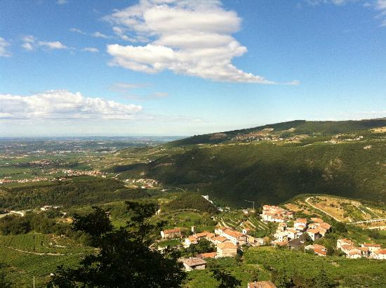 Pagus Wine Tours : Valpolicella Classico view from above