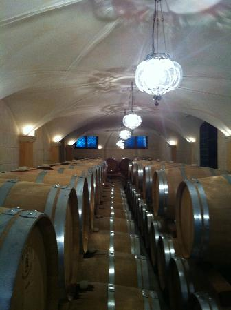 Pagus Wine Tours : Allegrini - bois de la France - vin de L'Italy