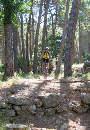 Mountain Biking Valencia   Tours: Guided mountain bike trips for individuals