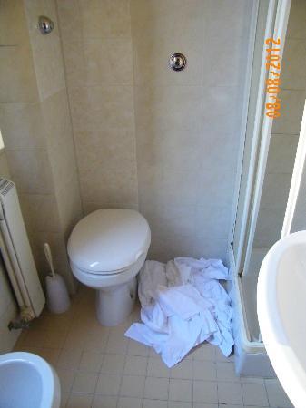Igea Hotel : En el baño teniamos videt, ducha, lavabo y para lavarse las manos.