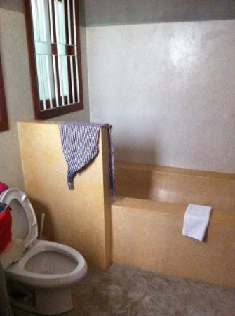 Frangipani Villa-60s Hotel: bathroom