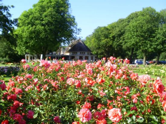 Rose Garden And Chinese Restaurant Picture Of Westbroekpark The Hague Tripadvisor