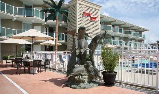 Park Lane Resort: Dolphin statue