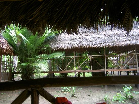 Maniti Expeditions Eco-Lodge: From the hammock room