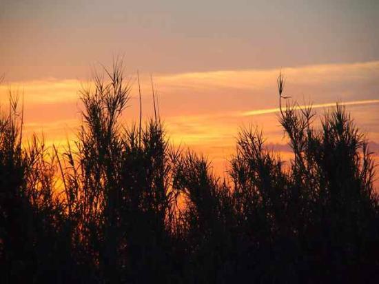 Agriturismo La Serra: Abendstimmung