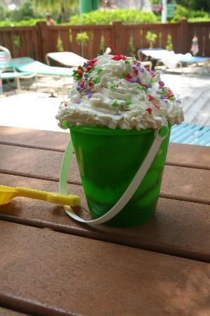 Blizzard Beach: Ice Cream Pail. Yum.