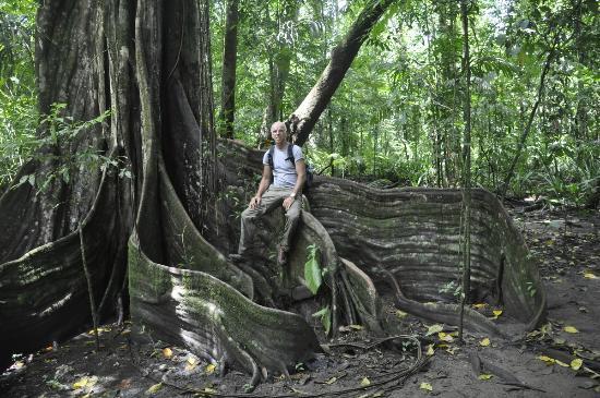 Corcovado National Park: Corcovado NP