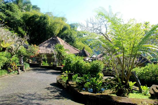 The Payogan Villa Resort & Spa: Hotel grounds