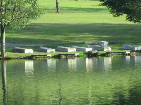 Mountain Springs Lake Resort: the rowboats that belong to cabins off of the lake