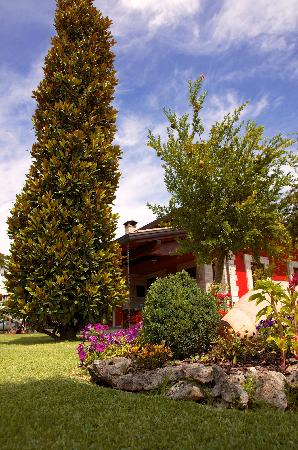 B&B Villa le Magnolie