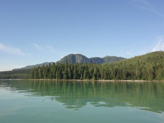 Grizzly Bear Lodge & Safari: View from the boat