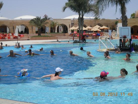 Mercure Hurghada Hotel: Nice activities