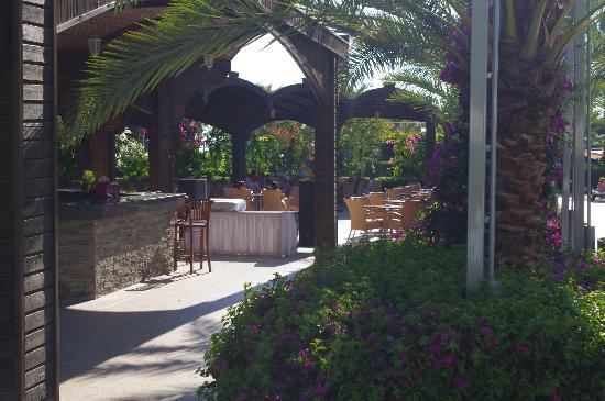 Mukarnas Resort And Spa Hotel: poolbar