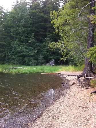 Skokomish Park at Lake Cushman : Lake access