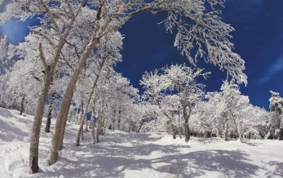 All Seasons Motel: Winter