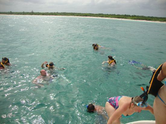 FatCat Ocean Adventures: snorkeling 