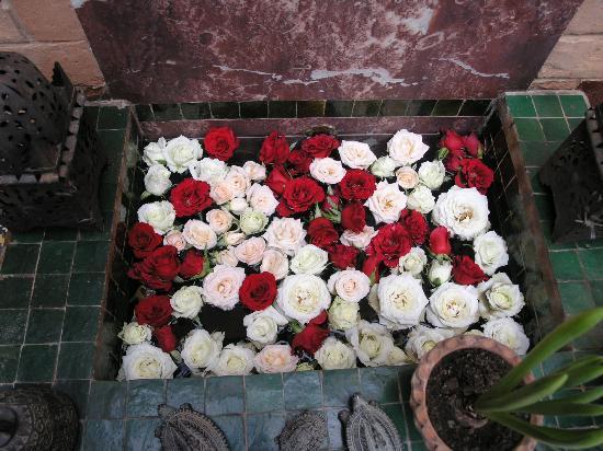 Maison Mnabha : Rose heaven