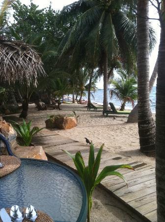 Robert's Grove Beach Resort : sea