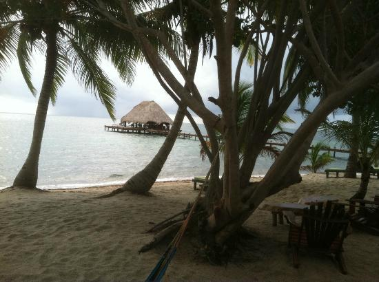 Robert's Grove Beach Resort : bar