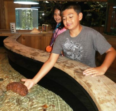 The Loxahatchee River Center: Kid holding sea cucumber
