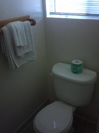 Skylark Shores Resort: Potty