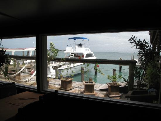 Utila Lodge: Dive boats as seen through the dining window