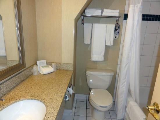 Holiday Inn Express Hotel & Suites Charlottetown : bathroom