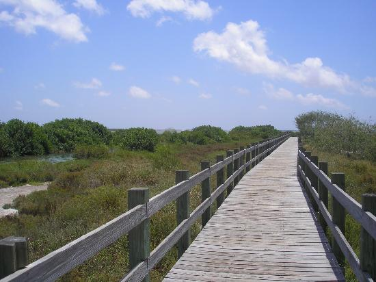 Hans A. Suter Wildlife Area: Boardwalk