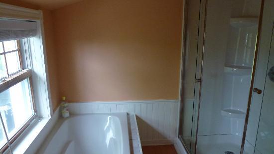 La Raveaudière: Chambre Surprenante - Salle de bain (1)