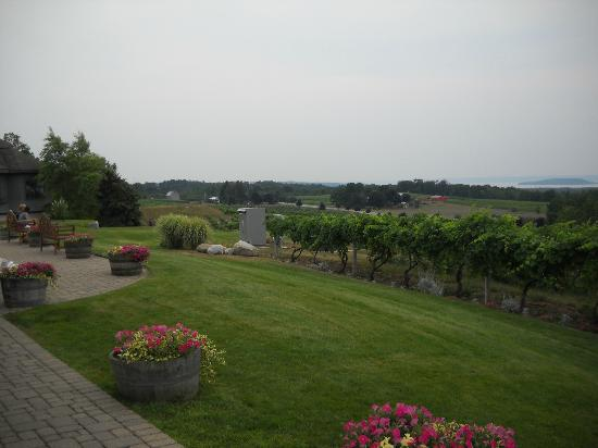 Chateau Chantal Winery and Inn: View from the patio of the grounds is amazing.