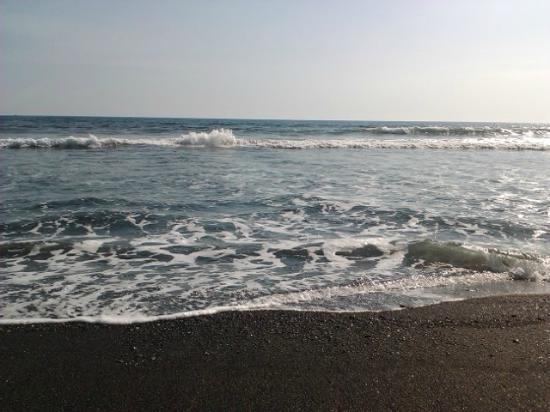 Tortuga del Mar: beach