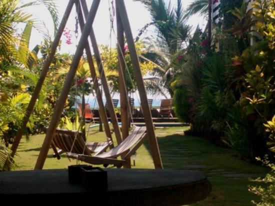 Tortuga del Mar: swing