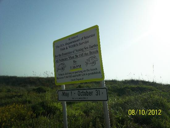 The Saint Augustine Beach House: A sign warning to be on the lookout for nesting sea turtles.