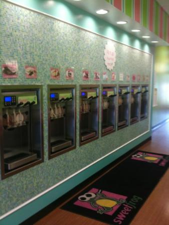 Sweet Frog Yogurt Cafe: Frozen Yogurt Machines