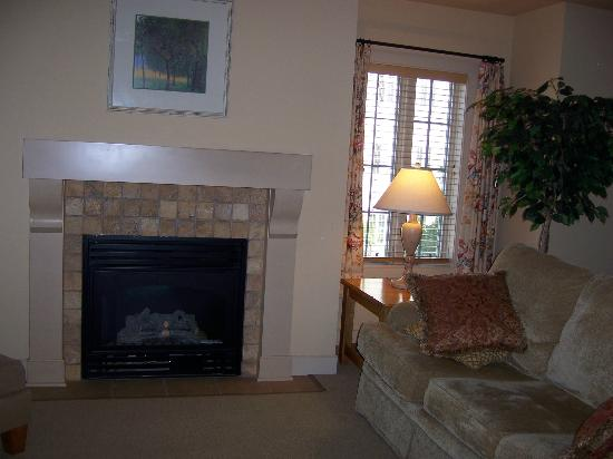 Stone Harbor Resort: fireplace in living room