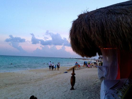 Acanto Condo Hotel & Vacation Rentals: Beach