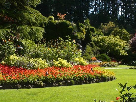 stunning butchart gardens | Stunning layout - Picture of Butchart Gardens, Central ...