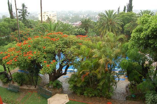 Hotel Victoria: giardino e piscina