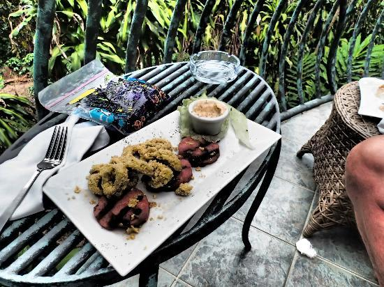 Finca Rosa Blanca Coffee Plantation & Inn: Crispy calamari and roasted watermelon, on our balcony!