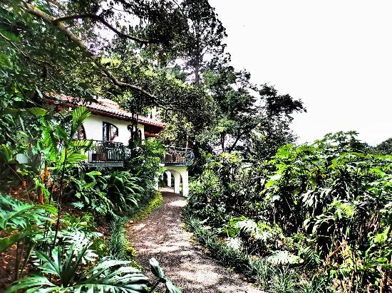 Finca Rosa Blanca Coffee Plantation & Inn: Our villa!