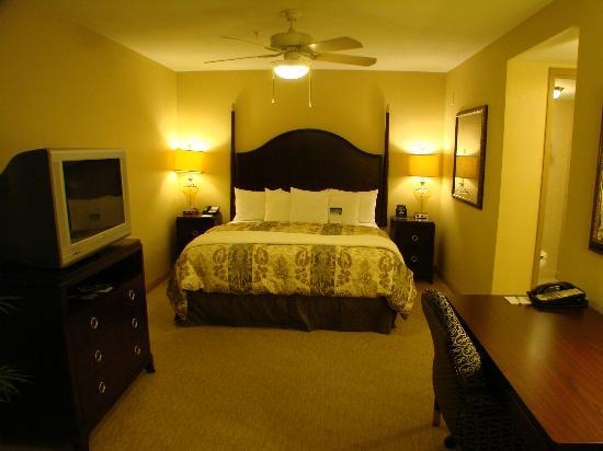 Homewood Suites by Hilton Albuquerque Airport: very comfortable bed