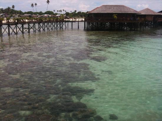 Sipadan Water Village: Crystal clear waters