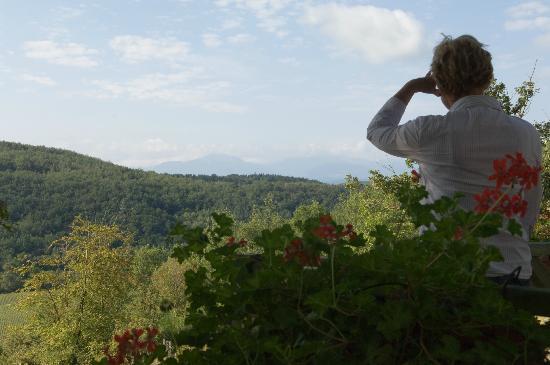 Camping Domaine de La Besse : Vue des cottage