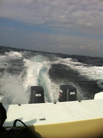 divedivedivebali: 170 hp fast and confortable