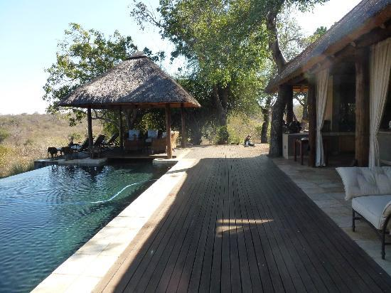 Khaya Ndlovu Manor House: Pool and deck area overlooking the Blue Canyon Conservancy game reserve