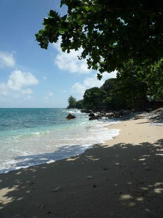 Baan Oui: jungle beach